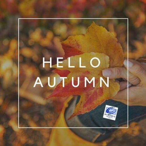 hello autumn branded graphic